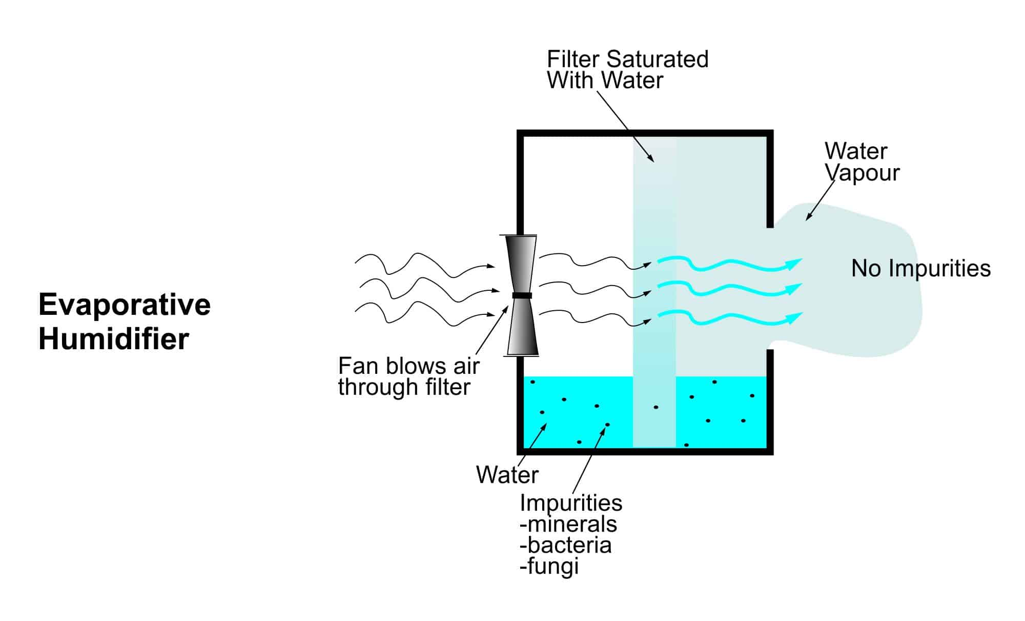 Schematic diagram of an evaporative humidifier
