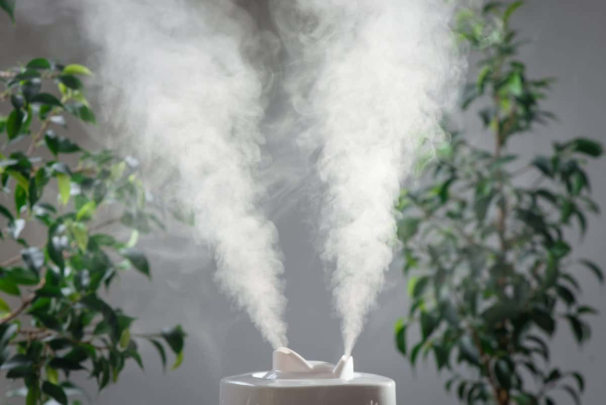 Humidifier emitting jets of water vapour